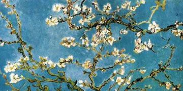 Vincent van Gogh - Almond blossoms