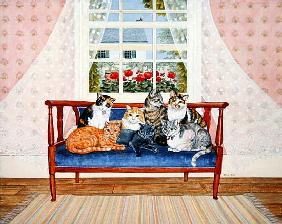 Biedermeier-Cats