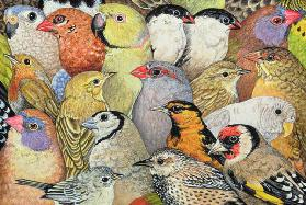 Patchwork-Birds, 1995 (acrylic on panel)
