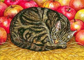 Left-Hand Apple-Cat, 1995 (acrylic on panel)