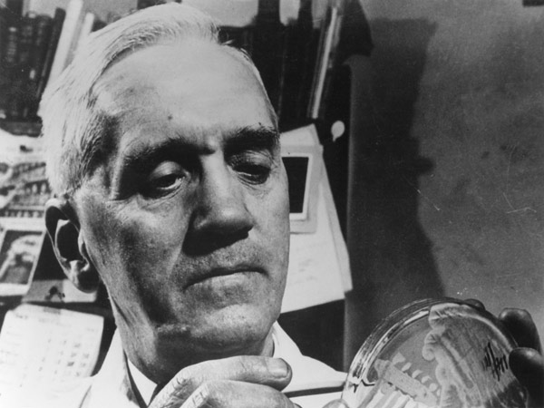 Essays on Discovery of Penicillin by Alexander Fleming