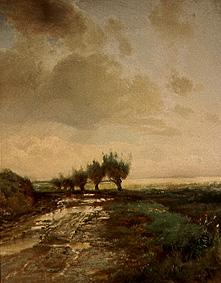 Savrasov, Alexej : The track across the field...