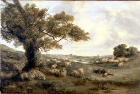View of Norwich