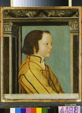 Portrait of a boy with brown hair