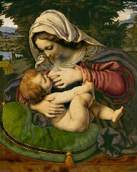 de Solario, Andrea : The Madonna with the green...