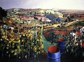 Allotments, St Wertburghs, Bristol (acrylic on canvas)