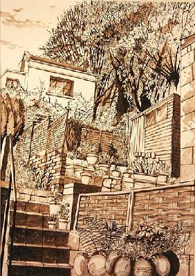 Back Garden, Bath (pen & ink and wash on paper)