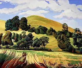 Little Hill, Cold Ashton (oil on canvas)