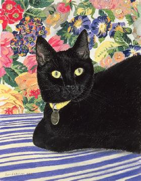 Black Cat (pastel on paper)