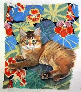Sootsy and Dufy Fabric (pastel on paper)