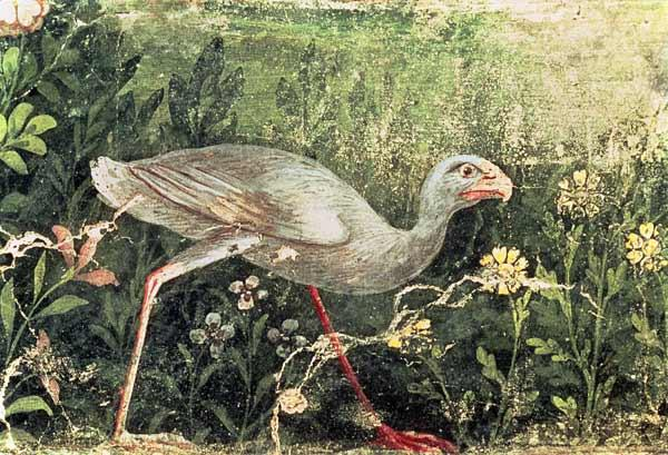 Wall painting of a Sultan chicken in a gardenPompeii