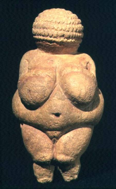 essay on venus of willendorf Essay by dr bryan zygmont khan academy is a nonprofit with the mission of the artifact known as the venus of willendorf dates to between 24,000-22,000.