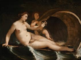 Venus and Amor, on which oceans driving