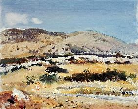 Gargano, 1981 (oil on canvas)