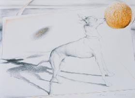 Space Dog (charcoal & pastel on paper)