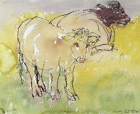 Young Bullocks in the Meadow, 1983 (pen & ink with w/c on paper)
