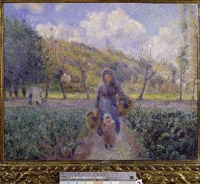 Pissarro, Camille : In the kitchen garden