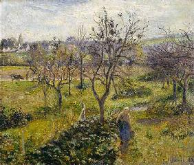 Pissarro, Camille : Landscape with kitchen gar...