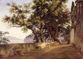 Garden of the Capuchin Friars, near Sorrento, 1827 (oil on canvas)