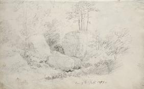 Boulders in Woodland