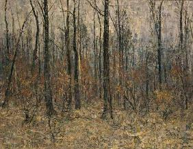 Rohlfs, Christian : Woods inside (autumn woods...