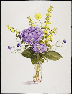 Blue Hydrangea with Yellow Loosestrife (w/c)