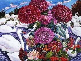Swans and Chrysanthemums