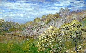 Monet, Claude : Trees in flower
