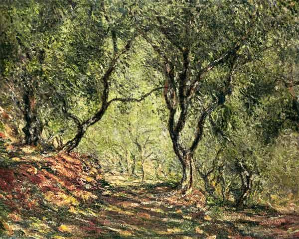 Monet, Claude : Olive grove in the garden ...