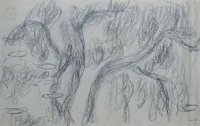 Reflections of Willows, c.1918 (black crayon on blue-gray paper)
