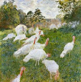 The Turkeys at the Chateau de Rottembourg, Montgeron