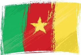 Grunge Cameroon flag