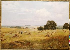 Waite, Edward Wilkins : Grain harvest