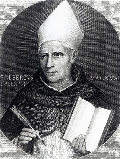 St Albertus Magnus English School As Art Print Or Hand