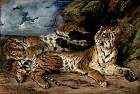 Delacroix, Ferdinand Victor Eug�ne : A young tiger plays with h...