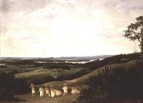 Panoramic View in Brazil with a River in the Distance  (pair of 61465)