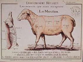 Mutton: diagram depicting the different cuts of meat (colour litho)