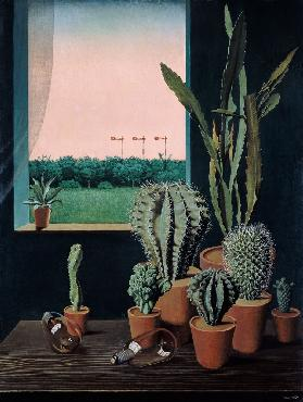 Cacti and semaphores
