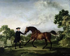 The Duke of Ancaster's bay stallion Blank, held by a groom, c.1762-5