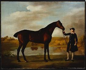 The Duke of Marlborough''s (?) Bay Hunter, with a Groom in Livery in a Lake Landscape