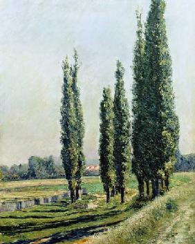 Poplars on the Riverbank at Argenteuil