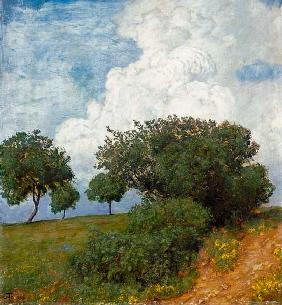 Landscape with cloud