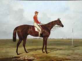A Portrait of 'The Cossack', Winner of the 1847 Derby with S. Templeman Up