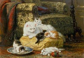 Ronner-Knip, Henrietta : Cat mother with boys