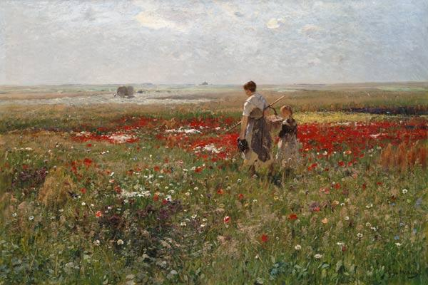 In the flower meadow