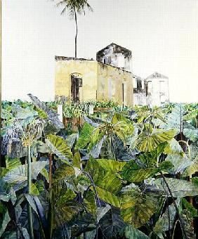 Ruin in a Swamp, Haiti, 1971 (oil on canvas)