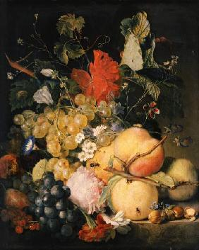 Fruits, flowers and insects