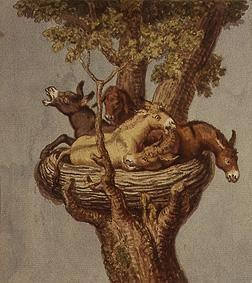 Donkey in the nest (donkey history)