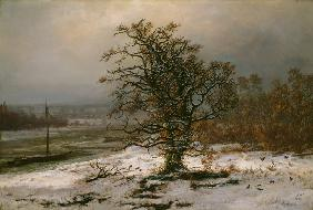 Dahl, Johan Christian Clausen : Oak Tree by the Elbe in Wi...