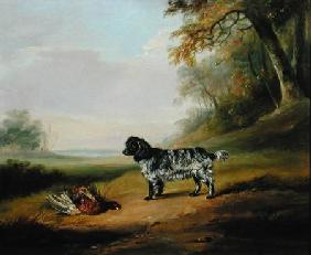 Landscape with a Dog